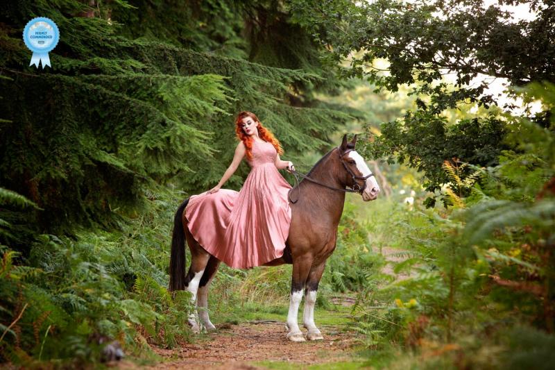 Johanna-Charlton-Dog-Photography-Equine-Photography-Lincolnshire-1